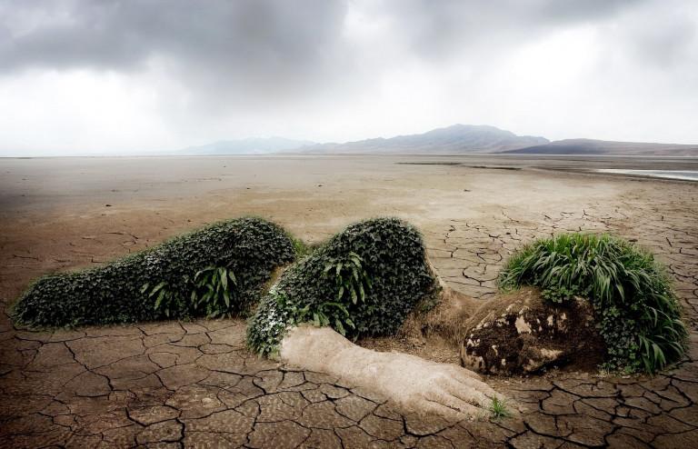 Foto: Klimaschutz ist ein wichtiger Beitrag zum Erhalt der Lebensgrundlagen.  Bildquelle: pixabay.com
